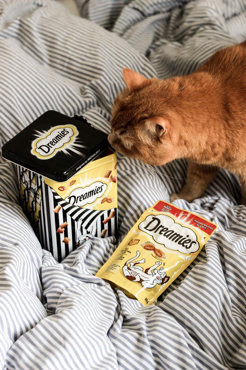 Michalsky x Dreamies: Katzen-Snacks sind groß in Mode - mehr auf www.little-emma.de.de